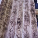Use as flooring, walls or siding and you get a look your sure to love